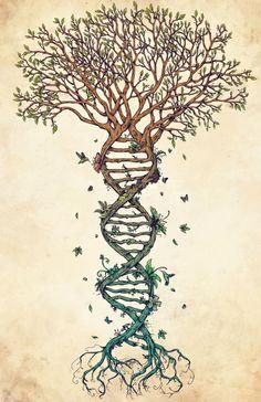 Design: Tree of Life