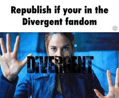 Divergent so, there's a fandom now,cool it such a great story. Divergent Hunger Games, Divergent Fandom, Divergent Trilogy, Divergent Insurgent Allegiant, Tfios, Divergent Jokes, Insurgent Quotes, Tris Prior, Tris Et Quatre