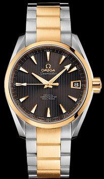 Omega Aqua Terra 231.20.39.21.06.002