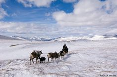 Incredible Mongolian Nomad photography by Hamid Sardar