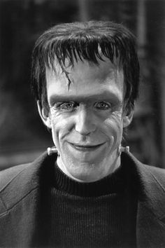 Fred Gwynne served as a radio operator in the US navy.