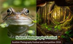 Scottish Nature Photography Festival and Competition 2016. Read full article: http://webneel.com/photography-contest-competition3 | more http://webneel.com/photography-news | Follow us www.pinterest.com/webneel