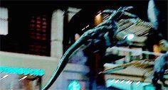 Echo and Delta attack Jurassic World