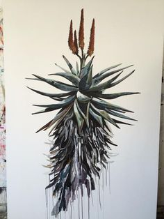 South African painter Kurt Pio brings a piece of Cape Town to Antwerp Botanical Drawings, Botanical Illustration, Illustration Art, Plant Drawing, Painting & Drawing, Art Sketches, Art Drawings, List Of Paintings, Occult Art