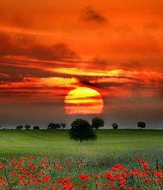 sunsurfer: Red Sunset, Tuscany photo by Nuno Milheiro All Nature, Amazing Nature, Beautiful World, Beautiful Images, Nature Landscape, Sunset Landscape, Beautiful Sunrise, Belle Photo, Beautiful Landscapes