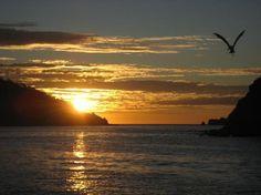 Photos of Barcelo Huatulco Beach Resort, Huatulco - All-inclusive Resort Images - TripAdvisor