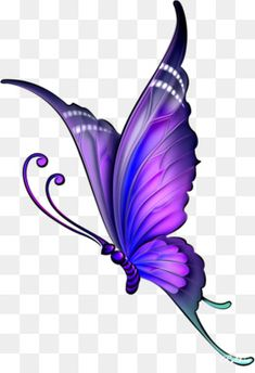 The Art of Drawing - Butterfly Sketch, Butterfly Pictures, Purple Butterfly, Butterfly Art, Monarch Butterfly, How To Draw Butterfly, Butterfly Wallpaper, Butterfly Painting, Pencil Drawings