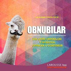 #Vocabulario