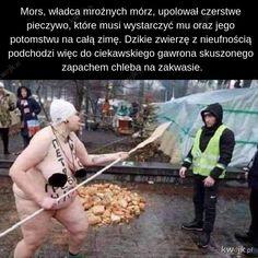 Czytała Krystyna Czubówna Wtf Funny, Funny Memes, Best Memes, Fun Facts, Haha, Sayings, Wattpad, Marvel, Ssbbw