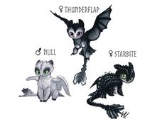 Mythical Creatures Art, Mythological Creatures, Night Fury Dragon, Fantasy Female Warrior, Lps Pets, Httyd Dragons, Dragon Sketch, Dragon Memes, My Little Pony Drawing