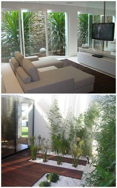 How to make a winter garden, How to make a winter garden. A garden is a beautiful element to include at home, as it brings us closer to nature and provides pleasant moments of gar. Interior Garden, Interior And Exterior, Indoor Garden, Home And Garden, Outdoor Spaces, Outdoor Living, Inside Garden, Garden Design, House Design