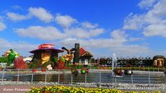 """Dubai miracle garden is awesome. A very aromatic and romantic place for every visitor. It make me remember the fairy tale """"Alice in Wonder l..."""