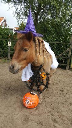 #Milou Mentink   Halloween!