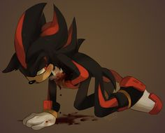 Shadow NO ! NOOOOOOOOOOOOOOOOOOOOOOOOOO SHADOW I WILL SAVE YOU!!! *Runs to Shadow and wraps a cloth around his chest* You will be okay...I know it...