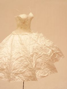 ℘ Paper Dress Prettiness ℘ art dress made of paper - Wrinkled tissue paper could be a really pretty effect
