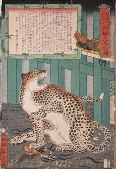 河鍋暁斎『今昔未見 生物猛虎之真図』(1860)ニューヨークRonin Gallery蔵