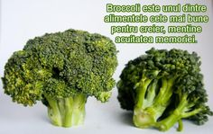 Can cats eat broccoli or is it toxic for your furry friends? Broccoli is not in the toxic foods list and can be fed to cats. It's safe for cats Hypothyroidism Diet, Thyroid Gland, Dark Green Vegetables, Frozen Broccoli, How To Freeze Broccoli, Freezing Broccoli, Blanching Broccoli, Freeze Zucchini, Zucchini Noodles