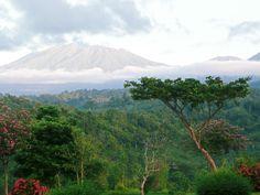 ... de mooie natuur van Indonesië