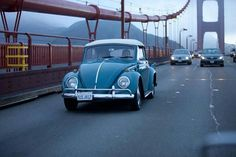 Vw Cabrio, Love Bugs, Vw Beetles, Dream Cars, Volkswagen, San, Type 1, Classic, Transportation