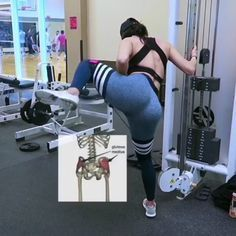Great workout from So you want that round butt look 🤔 Now the glutes have 3 muscles. & The gluteus medius is the most… Fitness Workouts, Fitness Tips, Glute Workouts, Inner Leg Workouts, Fitness Weightloss, Mode Adidas, Cable Workout, Gluteus Medius, Body Fitness