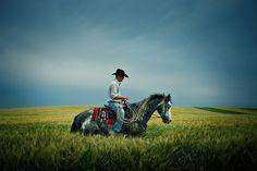 American Cowboys (15 photos) - My Modern Metropolis