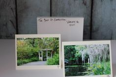 Box-set-of-10-Photographic-greeting-cards-Nature-greeting-cards