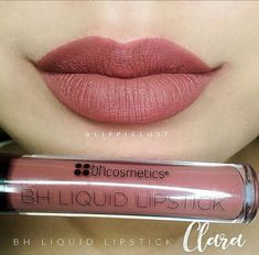 BH Cosmetics liquid lipstick in Clara Only swatched!
