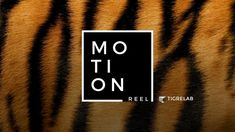 Here is a compilation of some our last projects with motion…