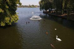 Herastrou park - Bucharest