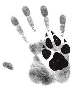 Dog Accessories To Make .Dog Accessories To Make I Love Dogs, Cute Dogs, Paw Print Art, Paw Prints, Wolf Paw Print, Paw Print Crafts, Animals And Pets, Cute Animals, Photo Chat