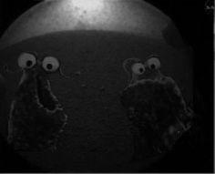Yep we're on Mars and I see life! ;)