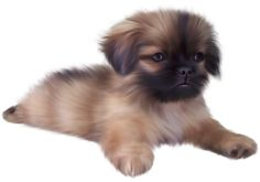 Painted Cute Puppy PNG Clipart