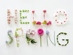 #Spring is the season for bluebells! It's the #firstdayofspring today. What else are you looking forward to seeing? #wednesdaywisdom #motivation #Quotes