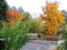 fall gardening check list -- pin now, read later! www.fiskars.com