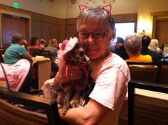 Coco, the Couture Cat: Wordless Wednesday, #BlogPaws Style! Pet Fashion, Fashion Show, Cat Walk, Wednesday, Glamour, Couture, Couple Photos, Cats, Style