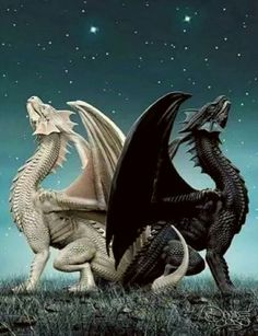 22 Ideas For Fantasy Art Dragon Wings Rogue Fairy Tail, Magical Creatures, Beautiful Creatures, Fantasy Kunst, Fantasy Art, Dragon Medieval, Cool Dragons, Are Dragons Real, Beautiful Dragon