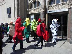 Fruit Costumes, Travel Videos, Brooklyn, Skylight, Green, Amp, Fashion, Moda, Dormer House