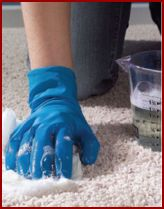 How to Clean Vomit From Carpets. Gross but good to know...