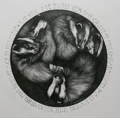 Sleeping Badgers  Badgers in Badger Sett by CompassionateDorset