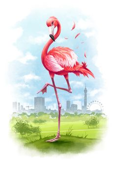 Flamingo illustrations by Abcum Ltd , via Behance