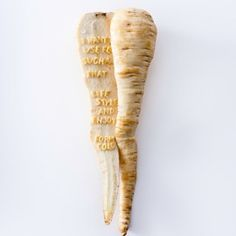 contemporary vegetable - 岡寛之hiroyukioka design
