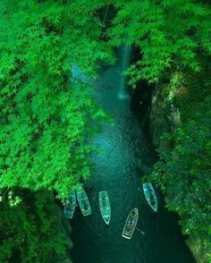 Manai Falls, Miyazaki, Takachiho Gorge, Miyazaki, Japan, 真名井の滝, 高千穂峡, 宮崎, 日本