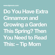 Do You Have Extra Cinnamon and Growing a Garden This Spring? Then You Need to Read This: – Tip Mom