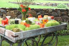build a frame like this for around the large ugly salad chiller bin. Bar Catering, Catering Display, Catering Ideas, Taco Bar Party, Party Food Bars, Garden Cart, Reception Food, Party Buffet, Veggie Tray