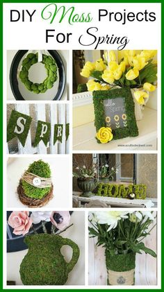 Lots of great spring decorating ideas! Moss is a great way to add a touch of spring and nature to your home. Lots of great DIY moss projects!
