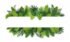 Cartoon illustration of tropical leafs vector concept banner for web design - Buy this stock vector and explore similar vectors at Adobe Stock Flower Background Wallpaper, Flower Backgrounds, Paper Background, Abstract Backgrounds, Bullet Journal Ideas Pages, Bullet Journal Inspiration, Cartoon Styles, Logo Design Inspiration, Aesthetic Wallpapers