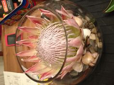 My wedding centre piece, king protea in a fish bowl on pebbles, sea glass and shells Modern Floral Arrangements, Wedding Arrangements, Wedding Table Centerpieces, Wedding Table Settings, Table Arrangements, Wedding Decorations, Table Decorations, Protea Wedding, Wedding Flowers