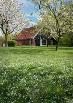 Wellnessvakantiehuis Villa de Schoppe, Landgoed de Weldaed, Aalten, Gelderland.