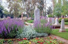 Cemetary gardens?