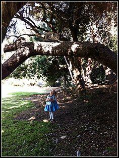 Cheshire Cat and Alice -   Toddler Wonderland Photo Shoot